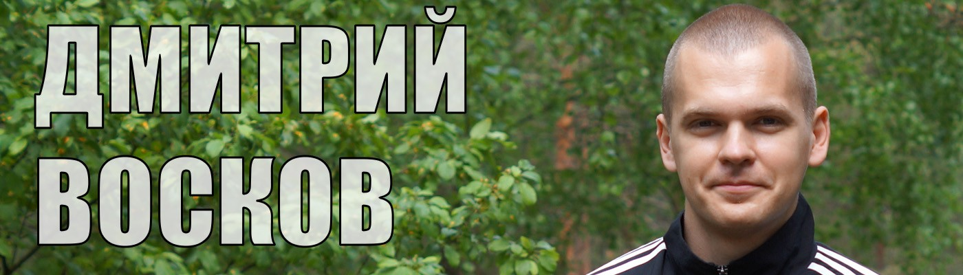 dmitryvoskov.com